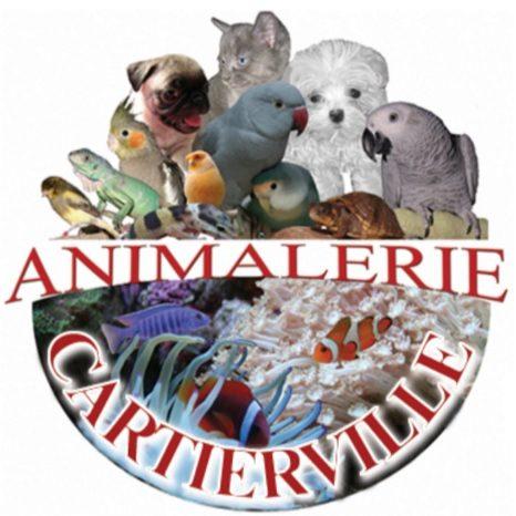 Animalerie Cartierville Pet Store